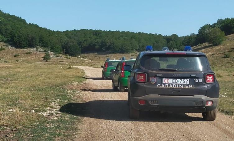 Carabinieri Forestali sequestrano diversi automezzi di due ditte boschive che hanno eseguito dei tagli uso commercio, in maniera difforme rispetto al progetto
