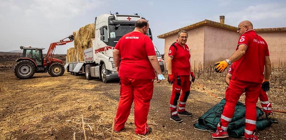Arrivano anche dalla Croce Rossa abruzzese gli aiuti per gli allevatori sardi in difficoltà dopo gli incendi