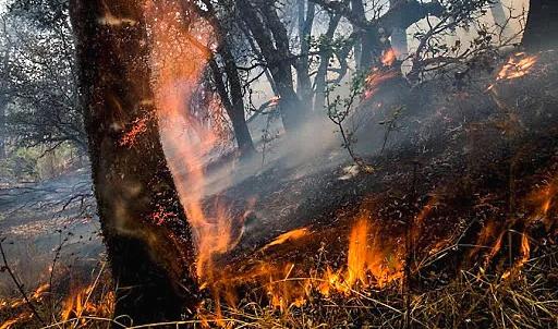 Rischio incendi, il Sindaco di Trasacco vieta l'accensione di fuochi e attività pirotecniche per il mese di agosto