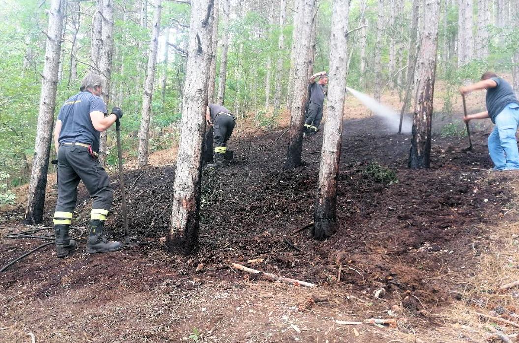 Celano, un incendio è stato scoperto e subito domato alla pineta in zona Casalmartino