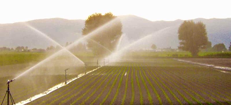 Settore irriguo, dal Ministero delle politiche agricole 1,3 miliardi per innovare le infrastrutture