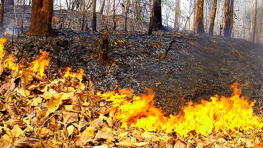 Suscettibilità innesco incendi boschivi, oggi rischio alto per tre Province abruzzesi