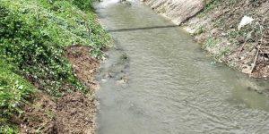 Pericolo salmonella: vietato utilizzare le acque dei fiumi Rafia e Imele per l'irrigazione dei campi