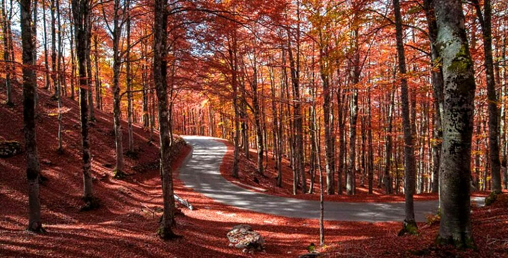 Forca d'Acero tra i luoghi meravigliosi da vedere in autunno secondo Viaggiando Italia
