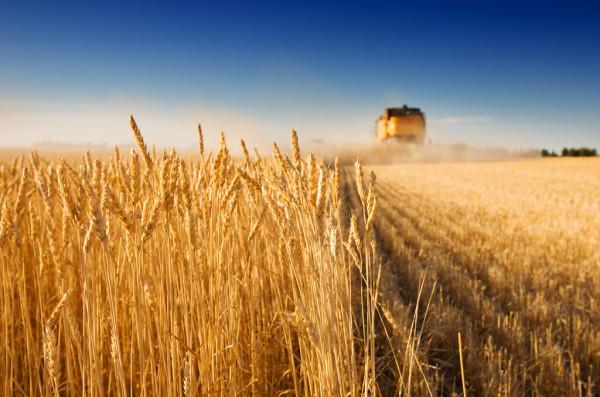 Zona industriale ad Avezzano: si punta al nuovo piano regolatore territoriale con apertura all'agroindustriale