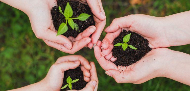Transizione ecologica e culturale delle scuole: al via le candidature per il Piano RiGenerazione