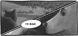 Un fumetto di The Factory dedicato all'orso marsicano investito in A25